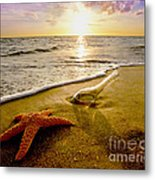 Two Friends On The Beach Metal Print