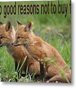 Two Good Reasons Not To Buy Fur Metal Print