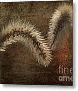 Two Grass Flowers Metal Print
