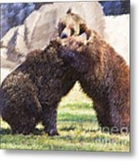 Two Grizzly Bears Ursus Arctos Play Fighting Metal Print