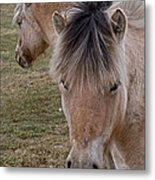 Two Heads Metal Print