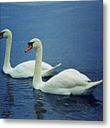 Two In Life Metal Print