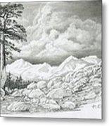Two Junipers - Starr Mountain Metal Print