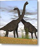 Two Large Brachiosaurus In Prehistoric Metal Print