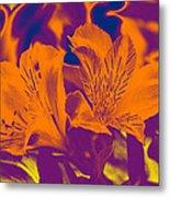 Two Lilies Gradient Metal Print