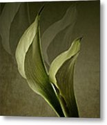 Two Lilly Fantasy Metal Print