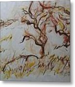 Two Olive Trees Metal Print