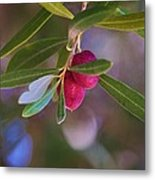 Two Olives Please Metal Print