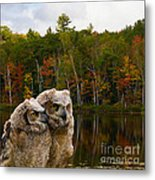 Two Owlets At A Lakeshore Metal Print