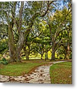 Two Paths Diverged In A Live Oak Wood...  Metal Print