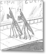 Two Praying Mantises Walk Together On The Street Metal Print