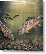 Two Rainbow Trout Metal Print