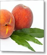 Two Ripe Peaches And Leaves Metal Print
