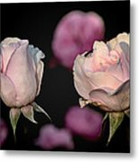 Two Roses And A Fly Metal Print
