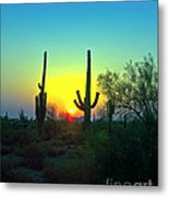 Two Saguaro Metal Print