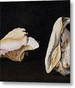 Two Shells Metal Print