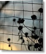 Two Sides Of The Fence Metal Print
