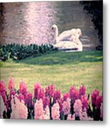 Two Swans Metal Print by Jasna Buncic