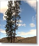 Two Tall Pines Metal Print