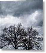 Two Trees Beneath A Dark Cloudy Sky Metal Print