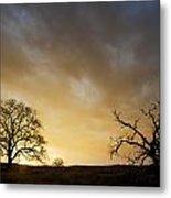 Two Trees Greeting The Sun Metal Print