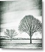 Two Trees In A Field Metal Print