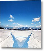 Two Ways Choice In Winter Metal Print