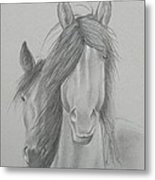 Two Wild Horses Metal Print