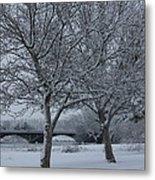 Two Winter Trees Metal Print