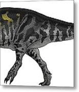 Tyrannosaurus Rex, A Large Predator Metal Print