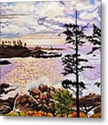 Ucluelet In December Metal Print