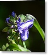 Ultra Violet Wildflower Metal Print