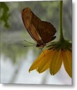 Under Cover Metal Print