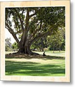 Under The Big Old Tree Metal Print