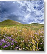 Under The Big Sky Metal Print