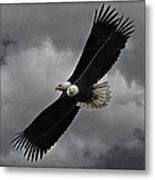 Under The Double Eagle Metal Print