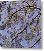 Under The Jacaranda Tree Metal Print