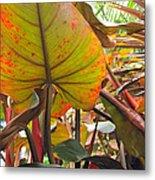 Under The Tropical Leaves Metal Print