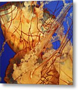 Underwater Friends - Jelly Fish By Diana Sainz Metal Print