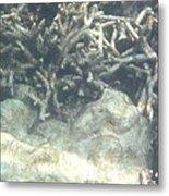 Underwater - Long Boat Tour - Phi Phi Island - 011340 Metal Print