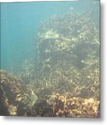 Underwater - Long Boat Tour - Phi Phi Island - 011381 Metal Print by DC Photographer