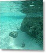 Underwater Tropical Island Photography Metal Print