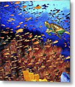 Underwater Wonderland Metal Print
