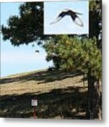 Unknown Flying Anomaly Metal Print
