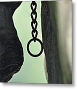 Unknown Ring Metal Print
