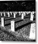 Unknown Soldier Cemetery Metal Print