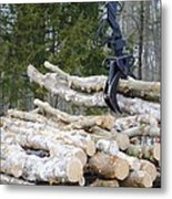 Unloading Firewood 4 Metal Print