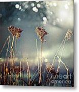 Unloved Flowers Metal Print