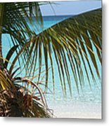 Unplugged In Paradise Metal Print