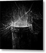 Untitled Cobweb Metal Print